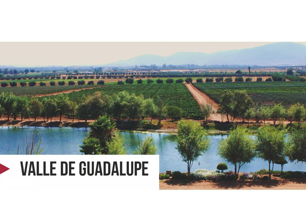 2. Valle de Guadalupe
