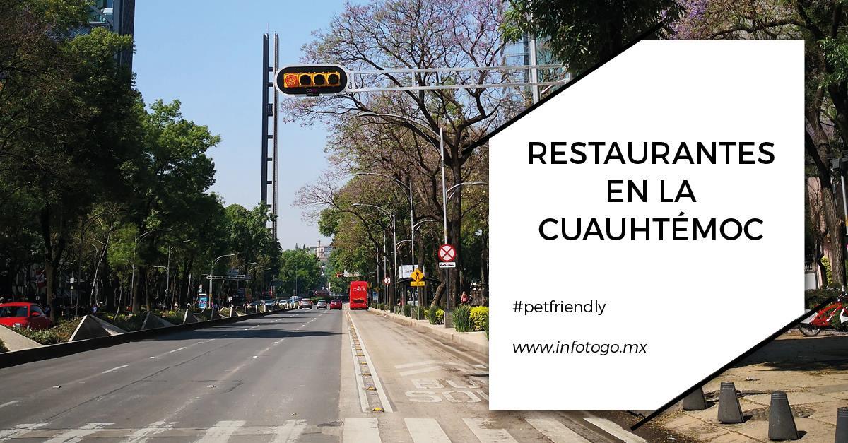 Restaurantes en la Cuauhtémoc (parte 2)