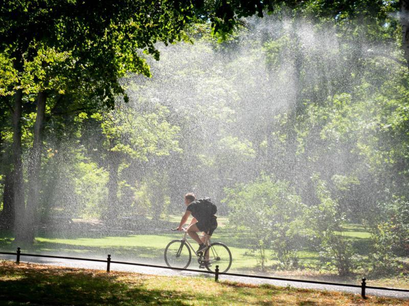 Ein Mann fährt auf dem Fahrrad im Berliner Tiergarten bei Hitze und Sonnenschein durch den Regen einer Bewässerungsanlage. Foto: Kay Nietfeld/dpa