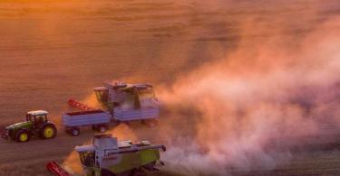 Mähdrescher ernten nach Sonnenuntergang ein Roggenfeld ab. Die deutschen Landwirte ziehen eine Bilanz der diesjährigen Ernte. Foto: Jens Büttner/dpa-Zentralbild/dpa