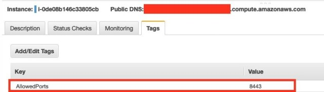 Figure 5: A tag attached to the EC2 instance that indicates an exception