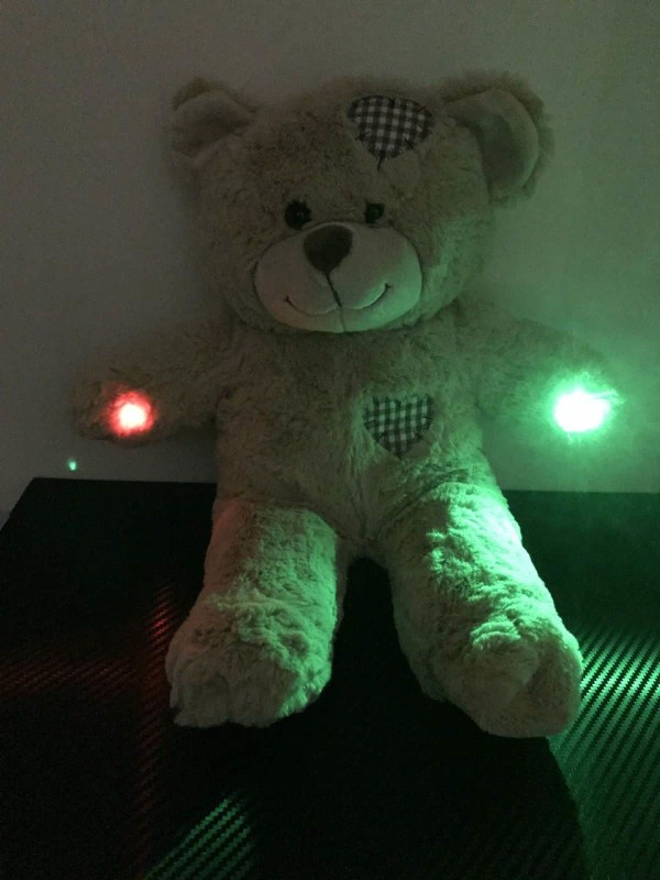 ghost hunting boo teddy bear