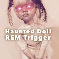 Haunted Doll Ghost Hunting