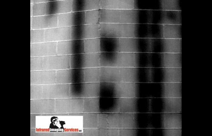 IRINFO 2010 Infrared Image contest winner Grout in CMU wall.preview 0 - Commercial Infrared Inspection