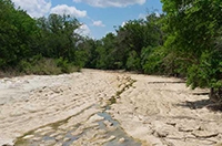 To the Last Drop: Wasting Water Endangers Texas' Rivers, Fish and Wildlife