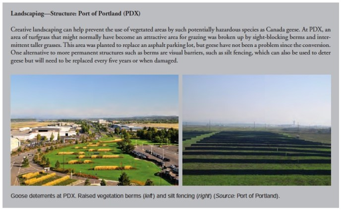 Landscaping—Structure: Port of Portland (PDX)