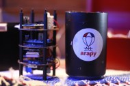 Proyecto Arapy