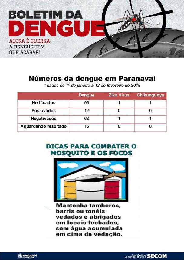 Boletim da Dengue - 1º de janeiro a 12 de fevereiro de 2019