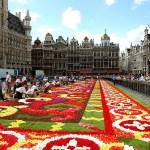 Prácticas remuneradas en Gestión – Bruselas
