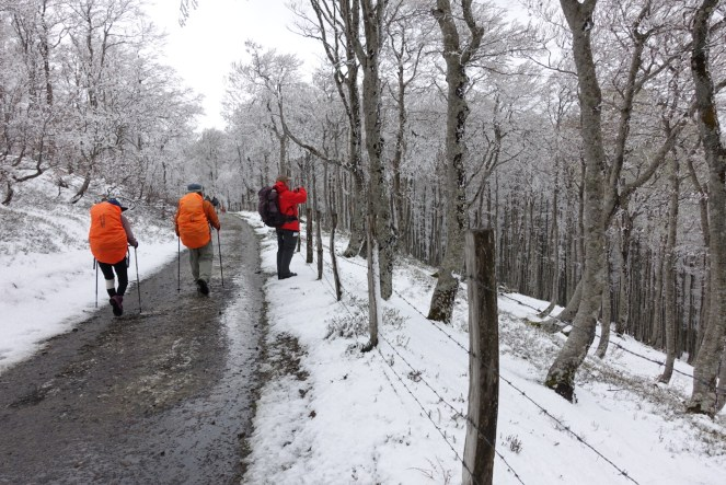 Snow onthe ground at the top