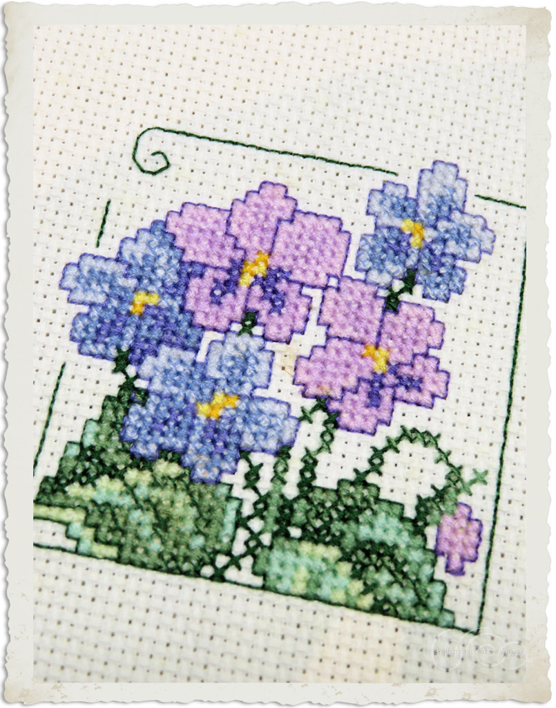 Handmade cross-stitch violets from Serendipity series Carolyn's garden