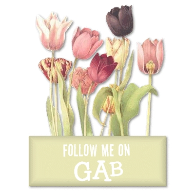 Follow me on GAB!