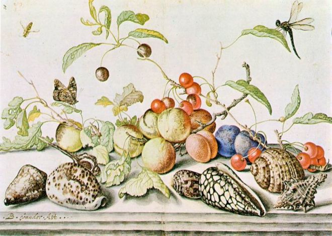 """Still Life"" by Balthasar van der Ast"