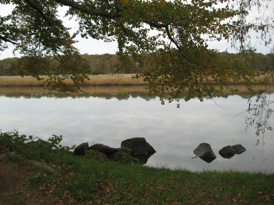 10.26.11 ~ Old Lyme, Connecticut
