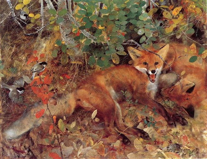 """Foxes"" by Bruno Liljefors"