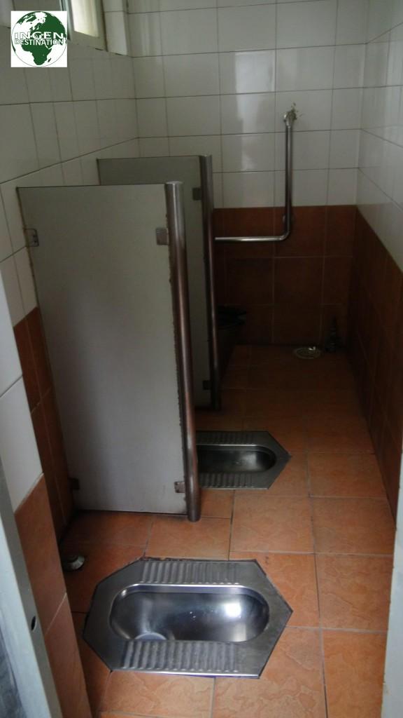 Det offentlige toilet!