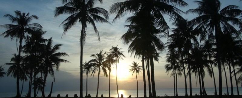 palme, Phu Quoc, beach, strand, scooter, pepperfarm