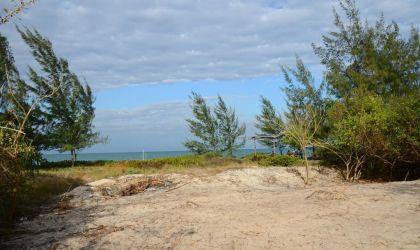 Efter alle buskene blev fjernet var der lige pludselig en smuk udsigt fra bar området