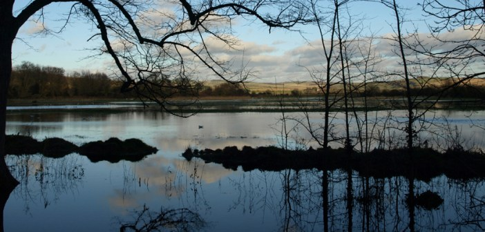 Reflections of Arundel