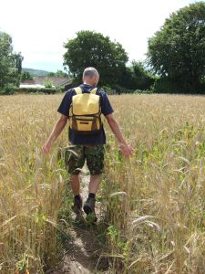 Chap doing his Maximus Decimus Meridius impression in a barley field.