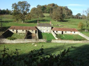 On the drive home from Stourhead, just to the south of the estate: fantastic little estate smallholding, with outbuildings for livestock. We could see geese, ducks and guinea fowl!