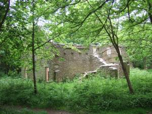A picturesuw ruin now. Since the village's abandonment, trees have grown where would once have been beautifully-tended gardens.