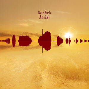The cover of Aerial by Kate bush, featuring the waveform of a blackbird's song.