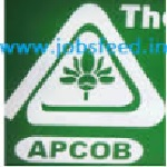 APCOB recruitment 2016 2017 staff Assistant 35 vacancies