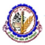 RPCAU Recruitment 2020 apply online 57 various vacancies