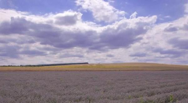 Weekend getaway from Bucharest – Veliko Tarnovo and lavender fields in Bulgaria