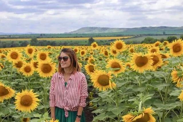 Veliko Tarnovo and lavender fields of Bulgaria