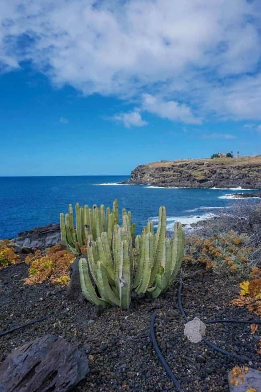 One week in Tenerife