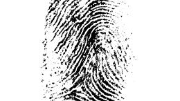 Lawyer Fingerprinting