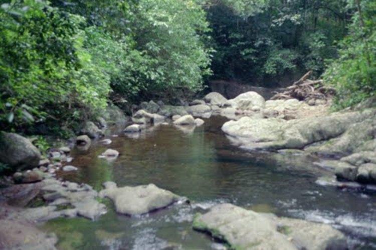 வைகை ஆறு
