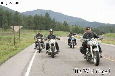 Wild Hogs - Four guys from the suburbs hit the road… and the road hit back