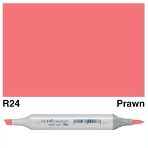 Copic Sketch R24-Prawn