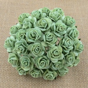 Wild Orchid Crafts Mint Green Mulberry Paper Open Roses