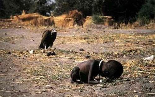 foto famosa de Kevin Carter, un buitre acechando a un niño moribundo