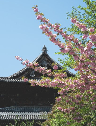 To-ji temple 01