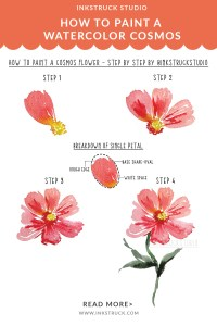 How to paint a watercolor cosmos flower step by step tutorial-Inkstruck Studio
