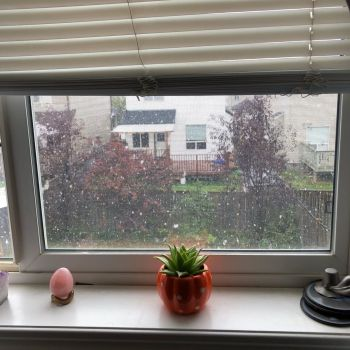 An egg-shaped rose quartz crystal and a small green succulent plant loiter on the window sill as snow falls in the yard beyond.