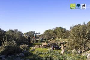 Visita guidata al sito archeologico di Corona Arrubia al Parco della Giara