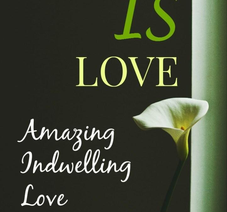 God's Amazing Indwelling Love