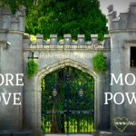 More Love More Power