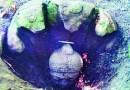 ओडीसा मध्ये सापडली बुद्धांची १४०० वर्षे जुनी मूर्ती, ज्यावर आहे ७ फणांचा साप!