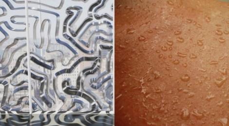 Homeostasis-inspired skin, a Biomimetic material.