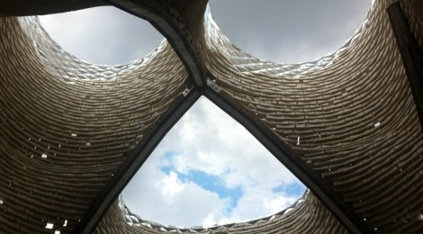 Upclose with Mycelia, the living material for Architecture and Design