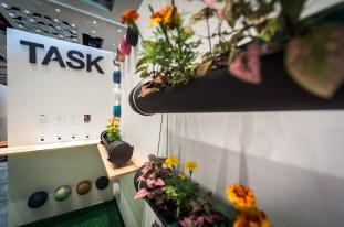 Task® Designs. Photo by Rashid Molinary