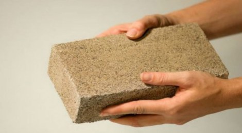 BioMason grown brick