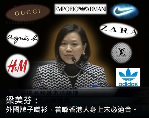 香港獨立媒體 | 梁美芬博士未必不支持普選公投 | 中國數字時代